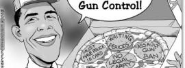 Chicago Style Gun Control